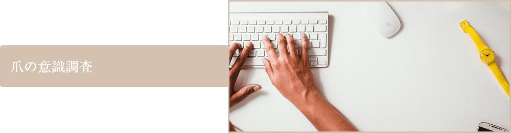 爪の意識調査